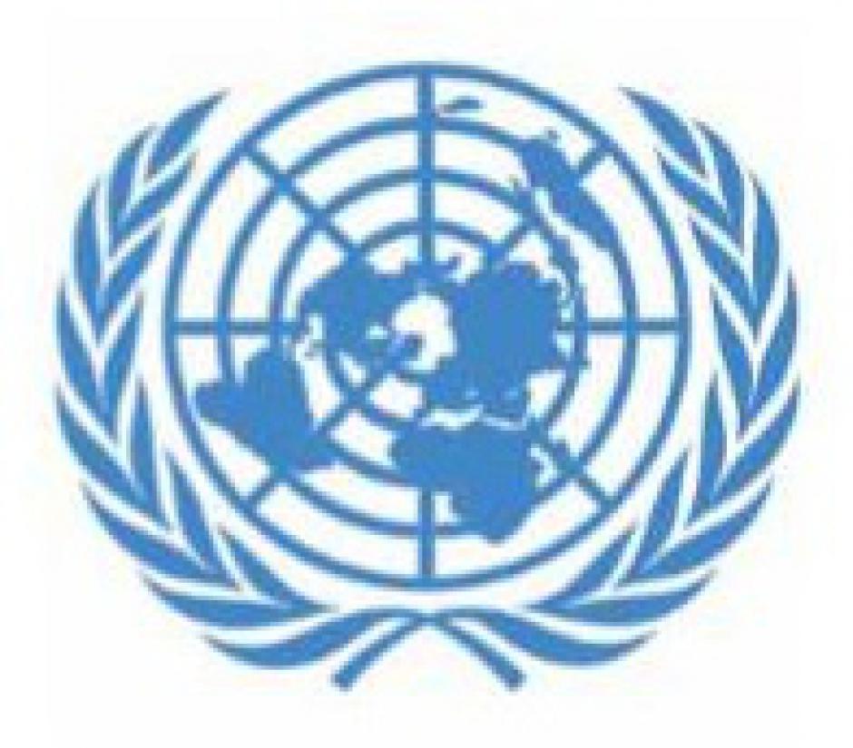 Sauvegarder, renforcer, réformer l'ONU