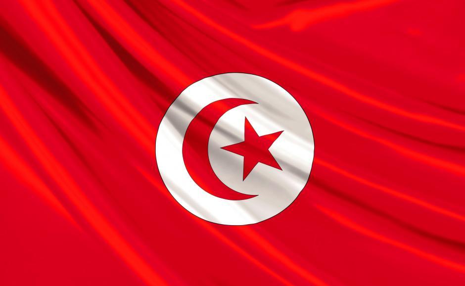 Sénat : question orale de M. Billout (PCF) sur la conversion de la dette tunisienne en projets de développement