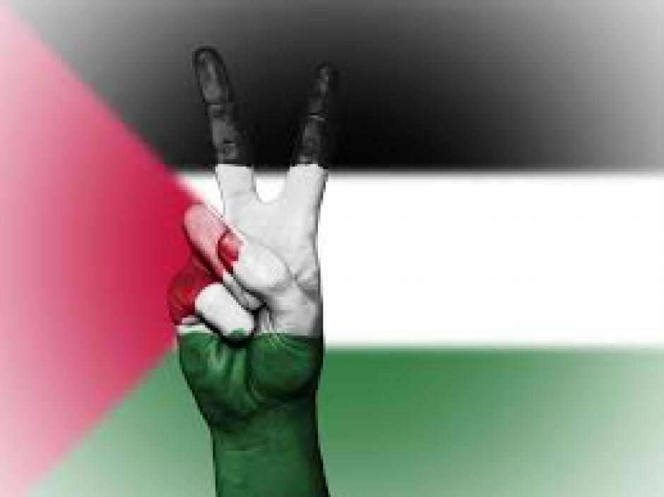 Palestine : Pacifistes et militants de la solidarité internationale des peuples unissons nos forces !