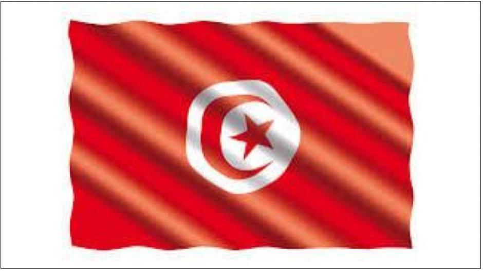 Tunisie: Inquiétants bouleversements après les scrutins présidentiel et législatifs